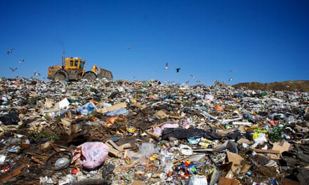 Waste characterisation and recycling potential in Stellenbosch