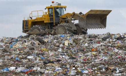 Waste pickers: nuisance or necessary?
