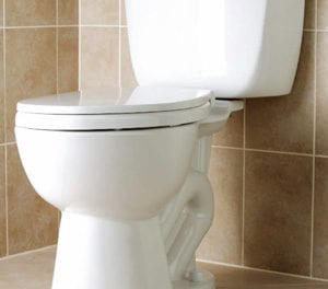 500 flushing toilets for Ficksburg before 2016