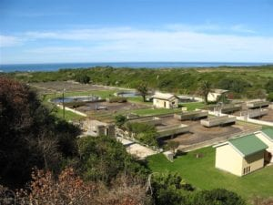 Cape Recife Waste Water Treatment Works image