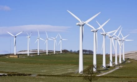Wind farms: sustainable solutions during energy crisis