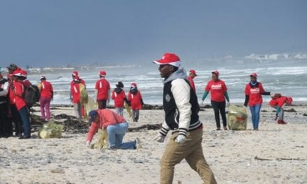Huge turnout for 28th International Coastal Clean-up Day