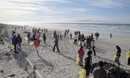 Coastal clean-up craze sweeps South Africa