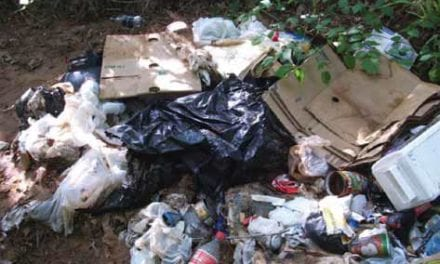 Cape Town clamps down on illegal dumping