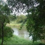 Bosveld Phosphate found guilty of water pollution