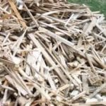 Waste wood and timber create jobs