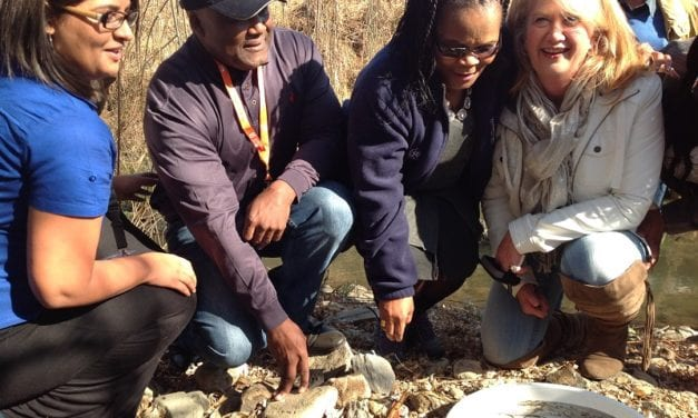 DWS launches new water education project