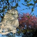 Banning the plastic shopping bag in South Africa – An idea whose time has come