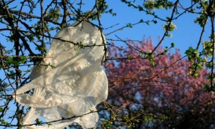 New plastic bag specifications enforced