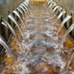 What is the outlook for water until 2020?