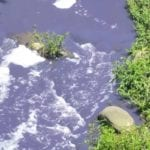 Umbilo River contamination spreading