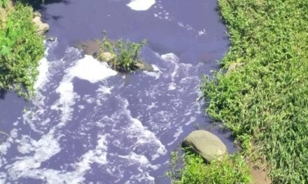 Umbilo River contamination spreading