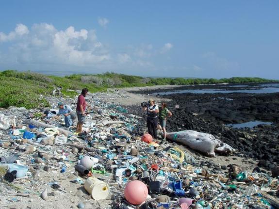 Single use plastics – Are we heading for an impasse?