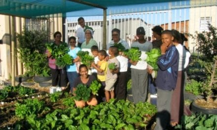 Community food gardens sustain SA