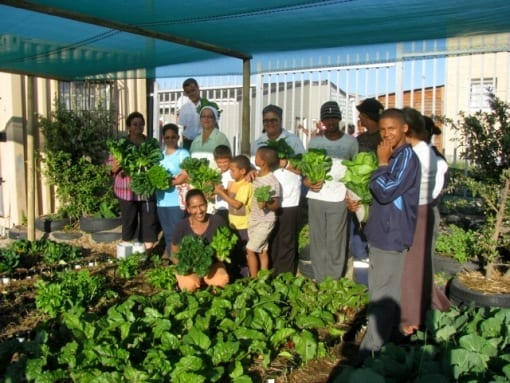 Community food gardens sustain SA