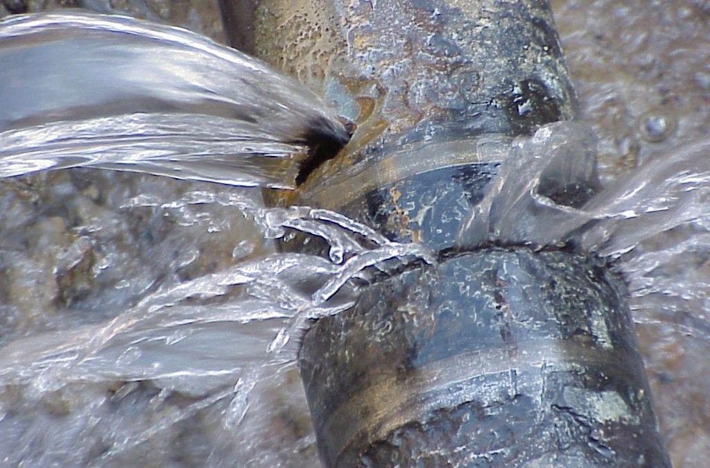 Ekurhuleni prioritises training of water stewards