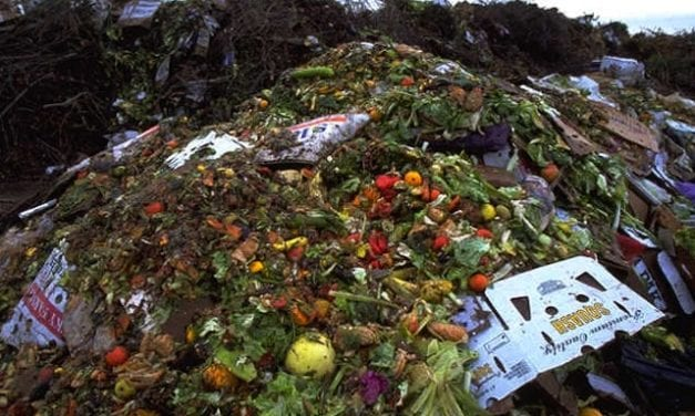 Food waste from Paris Climate Summit turned into power