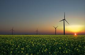 Biomass power for renewable energy