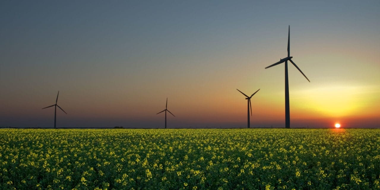 Coalition unveils vision for utility of the future in low energy access countries