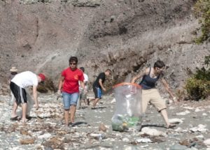 Image result for Durban city clean up