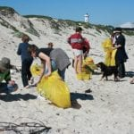 Beach volunteers clean-up while the sun shines