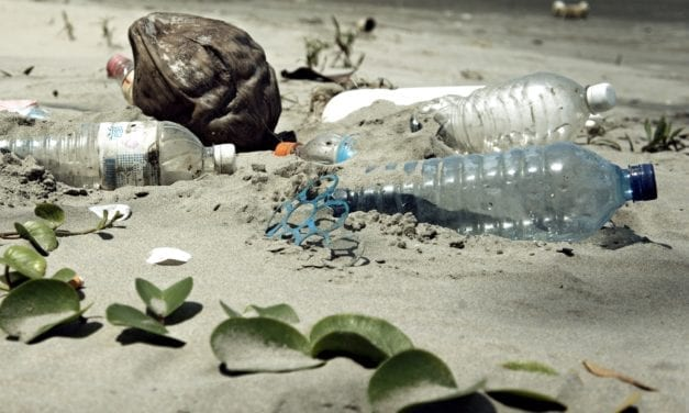 Plastics industry calls for infrastructure to help combat plastic pollution
