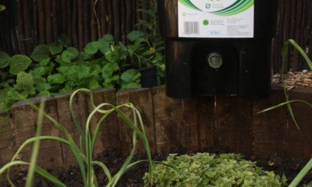 Composting for a win and a place