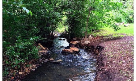 Rehabilitating a river
