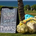 New app to revolutionise International Coastal Cleanup data collection