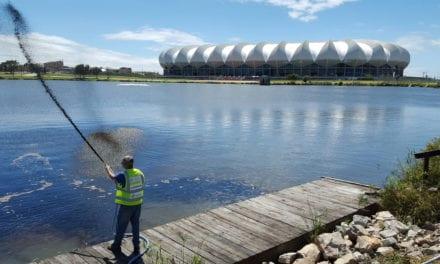 Bioremediation proves successful in Nelson Mandela Bay