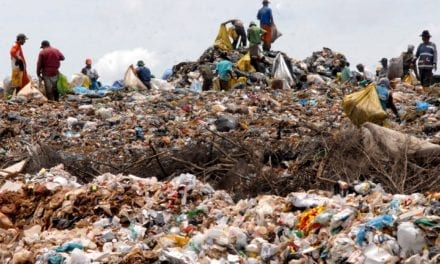 Waste pickers to join the formal waste economy
