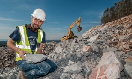 N2 roadworks uncover never seen before fossils