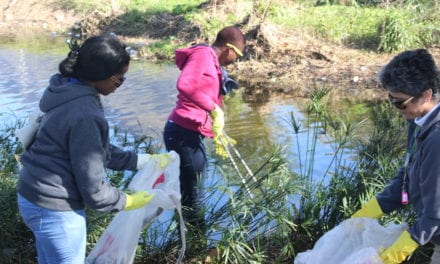 Cleaning rivers for Madiba