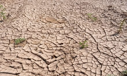 Umfolozi River runs dry