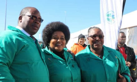 R30-million 'Gauteng Jobs in Waste' launched in Randfontein