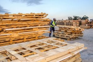 Wellington Kelem, piles up wood at the Struandale plant waste yard. Picture: Quickpic