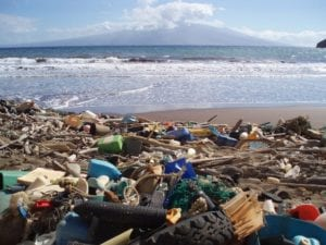 A new report says that there could be more plastic than fish in the ocean by 2050. Picture: Supplied