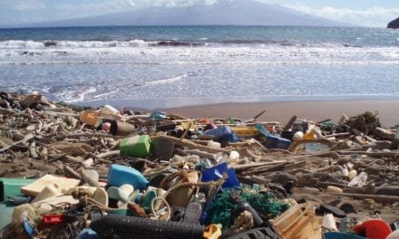 Committing to tackling plastic waste in effort to save world's oceans