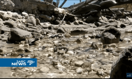 Water scarcity dominates 6th World Sustainability Forum