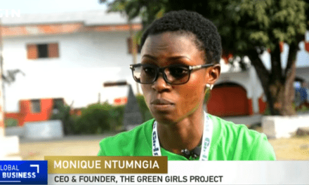 Cameroon's young girls learn to turn waste into renewable energy