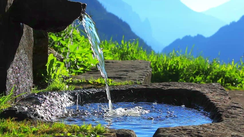 Looking to nature for answers to overcome water woes