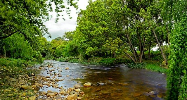 Lourens River: Some 10 km of the Lourens River flows through a section of the farm.