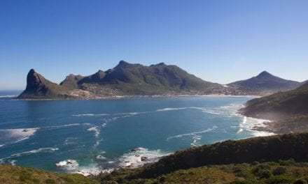 Celebrating World Environment Day by cleaning up Hout Bay
