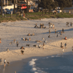 Weather impacts water consumption in Cape Town