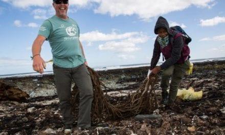 Keeping SA's coastline pollution free