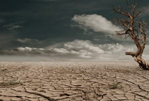 Opinion Piece: Ten good things about Cape Town's Drought
