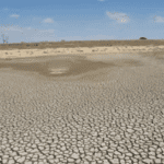 Surviving drought in South Africa