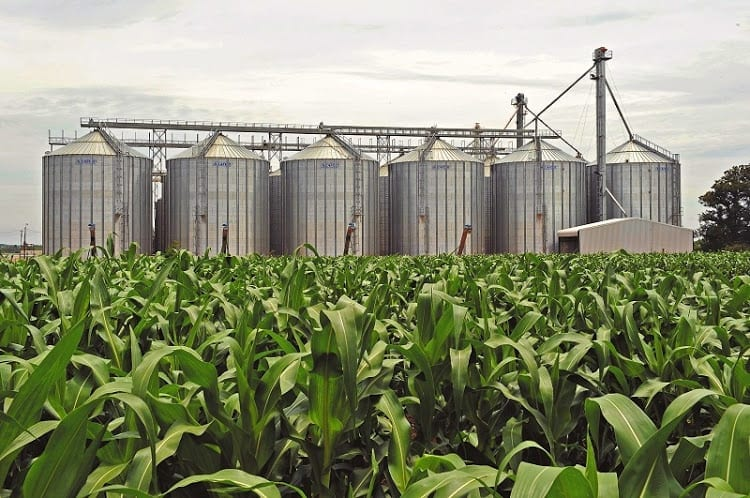 Eastern Cape farmers reel amid massive water cuts