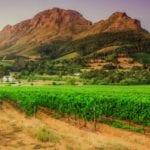 Addressing Stellenbosch's bulk infrastructure backlog