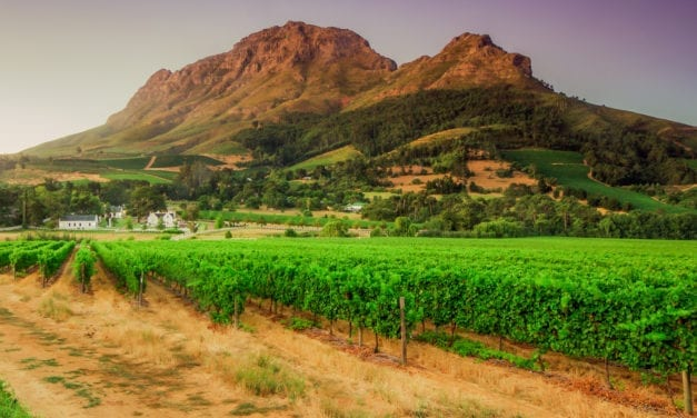 Addressing Stellenbosch's bulk infrastructure backlog